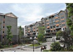 重庆白市驿商业住宅项目柔性饰材工程案例