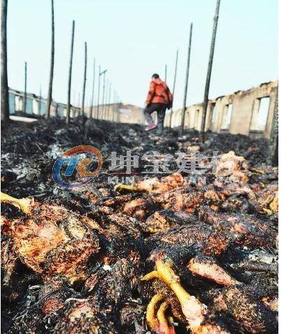 养殖场发生大火
